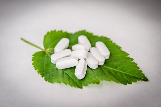 photo leaf with pills